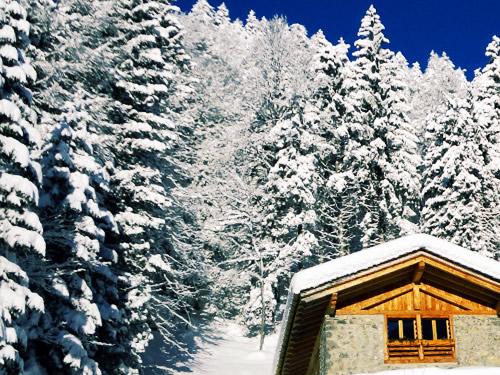 capodanno in baita rifugio valle d aosta foto